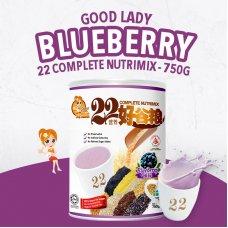 22 Complete Nutrimix (Blueberry) - 750g