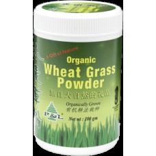 Wheat Grass Powder - 100g